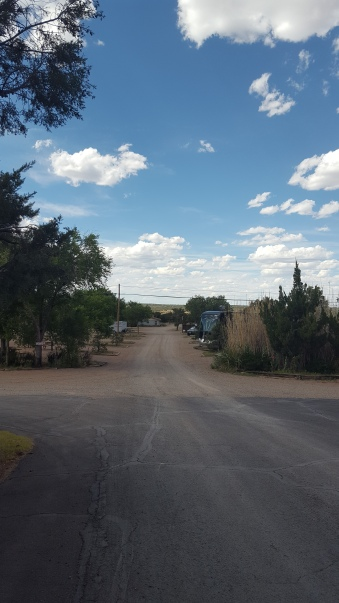 This is a view down the main street of the campground where we began our walks.