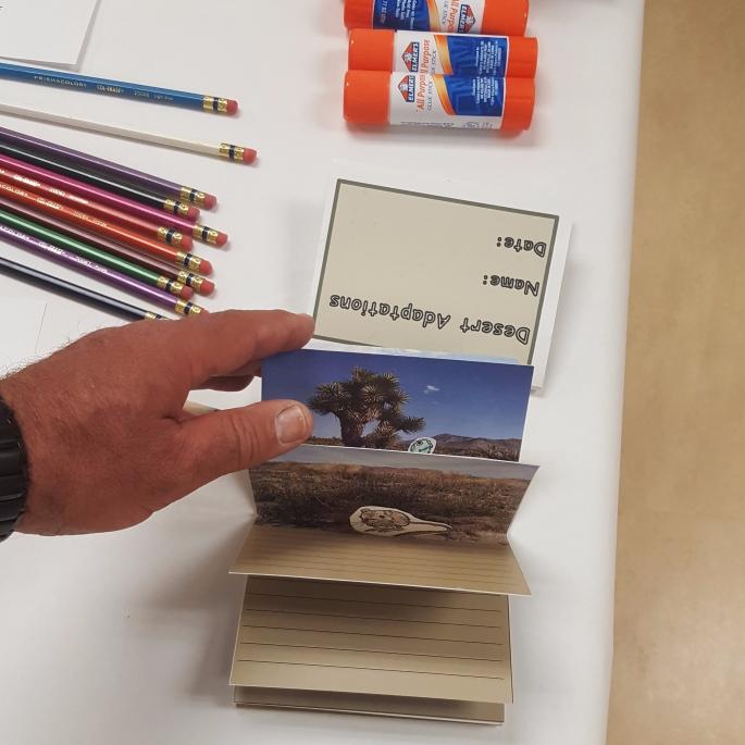 d-sample-pop-up-book.jpg