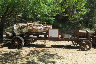 This old truck has seen better days and is missing a few parts. Notice that its timber load is just as old and rotten.