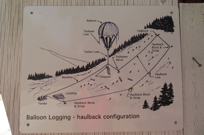 Balloon Logging!