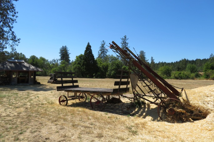 Fresh Hay on 100 Year Old Equipment