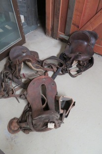Bunny explained that her father and the board had a real problem saying no to local donors who brought pieces in to the museum. The Range Riders had many multiples of items such as these saddles. Not that the one in the foreground is an Army saddle. It has absolutely no concern for the comfort of the rider, which is typical even today.