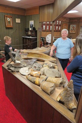 Bunny explained that so many fossilized items were acquired by the museum over the years that there was no way to display it all. With a little help from a local paleontologist the best examples of identifiable parts were assembled and displayed. The rest of the items unfortunately have no means for identification of part or animal so remain stored in an annex.